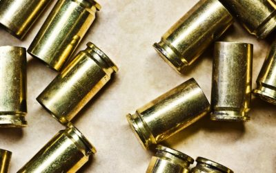 Firearms and Ammo Dealer Right in Naples, Florida